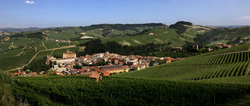  The Barolo wine museum